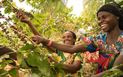 Let's Talk Coffee® Best of Rwanda to unite supply chain this week