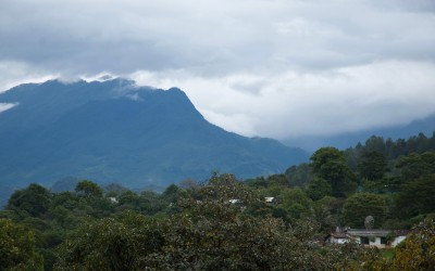 Let's Talk Coffee®: Exploring Mexico's Coffee History